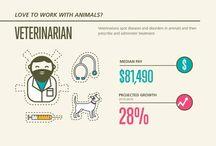 Infographics / by Mona V.
