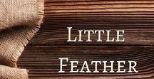 Little Feather / Little Feather: Activities and ideas to accompany the telling of the fairy tale.
