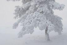 White / All white