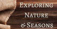 Exploring Nature and Seasons / This board is dedicated to activities and ideas to help you and your students explore nature and seasons.