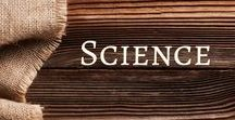 Science / A board packed full of science activities and ideas for your early childhood classroom.