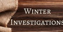 Winter Investigations / Activities and ideas for your winter investigation in an early childhood classroom.