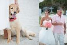 Real Weddings at The Beach House / by The Beach House Weddings
