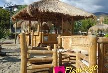 Playa el Flamingo / Dalla spiaggia centrale di Marina di Camerota  per portarvi alla scoperta di un luogo che è puro divertimento, relax e intrattenimento, di giorno e di notte a ritmo latino. I migliori servizi in spiaggia, dai più classici ai più inaspettati, un'esclusiva area privé, ambienti unici ed esclusivi,  un disco bar per aperitivi e serate di musica e divertimento, un luogo in cui lasciarsi viziare per tutto lo scorrere delle tue vacanze.