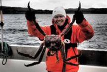 Kalastusta /Fishing / Monenlaista kalastusta Kaamasessa ja ympäristössä