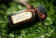 Sweet Androgyny / Androgynous style