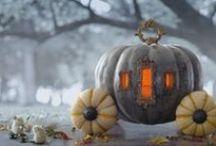 Halloween / by Lattemamma