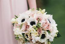 Our Wedding / Blush, Navy & White