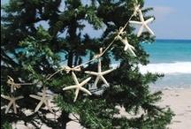 Coastal Christmas / by Diann Perrin