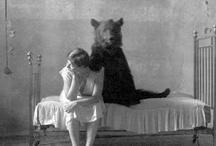 Ladys and Bears <> Edit & björnen