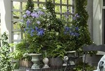 Gardens / Garden colour inspiration