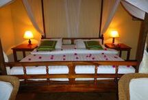 African Safari Accommodations & Food