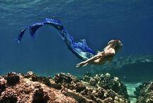 Mermaid / I want to be sexy&cute Mermaid!
