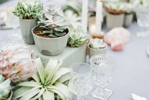 * Tablescapes *