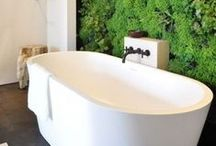 Decorating Your Bathroom with Greenery / Decorating Your Bathroom with Greenery