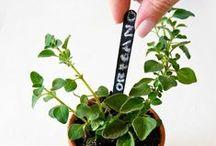 DIY Garden Markers / Easy To Make DIY Garden Markers