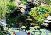 Dreamy Backyard Pond Designs / Dreamy Backyard Pond Designs