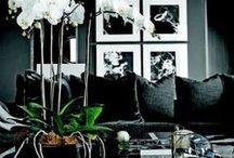 Masculine Living Room Design Ideas / Masculine Living Room Design Ideas