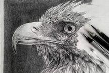 Realism:art:B&W animals ♫ ♪ ♥●•٠·˙ ☯ / réalime