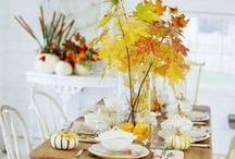 Comfy Fall Kitchen Decor / Cozy And Comfy Fall Kitchen Decor Ideas