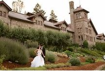 Weddings in St. Helena / The Napa Valley boasts a variety of venues fit for a dream wedding.