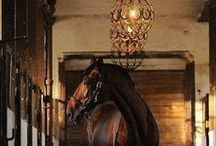 home ~ stables / Horse Stable & Barn Ideas