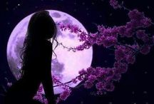 Moon / Moon photos