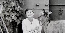 "Lady Hepburn / "" Elegance is the only beauty that never fades. "" - Audrey Hepburn"