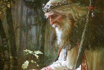 Druidy