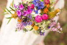 010 - flowers / flower photo's
