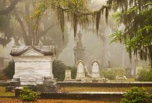 Grave Beauty / Graves / by Tracy Gady