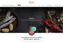 Highlights   web design