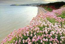 Beautiful Places / Bo na świecie jest wiele pięknych i intrygujących miejsc