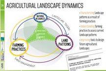 landscape agronomy