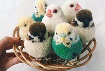 Crochet, pompons, tricotin