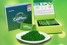 """Cellmaxx"" nutrition food / CellMaxx adalah superfood yang berfungsi  merangsang pembebasan stemcell dari tulang sum-sum untuk mengganti dan mengembalikan sel-sel tubuh secara alami, sekaligus membantu memperbaiki jaringan organ tubuh dan mengoptimalkan fungsinya  http://www.maxxpro.biz/?reg=evvyanida"