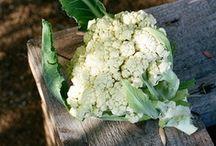 Food green / green stuff