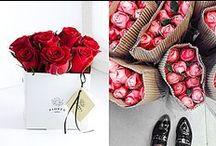 Fashionblogs / Lees al onze leuke en inspirerende fashionblogs op www.vimodos.nl