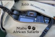 Ntaba Photography / African Photographer Robin Mountain, leads Photographic Safaris to Africa. All photos posted here are property of @NtabaAfricanSafaris / by Ntaba African Safaris