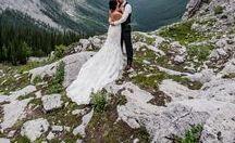 Wedding Plans / weddings