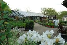 Nursery Tour / Come and see what a lovely outdoor living centre we have, customers call it inspirational and beautiful. #OutdoorLiving #EnjoyOutdoors #PlantAndOutdoorLiving