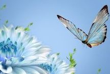 """~ButterflyBeauty~ / """"Feel free to fly""""NO PIN LIMIT!!"""