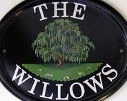~The Willows~