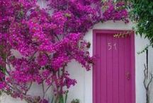Radiant Orchid inspiration for the home