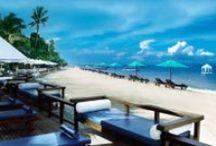 Eksotisk badeferie / Gør drømmerejsen til virkelighed.... Drømmer I om en fantastisk badeferie i eksotiske omgivelser, luksuriøse hoteller, kridhvide sandstrande og et eventyrligt azurblåt hav?  Så er der her virkelig mulighed for at slappe af, nyde den skønne sol, en forfriskende dukkert i det svalende hav, en hel suveræn forkælelse for  krop og sjæl.  Velkommen til Bravo Tours' eksotiske paradis!
