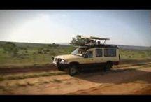 Safari inspirationsvideoer