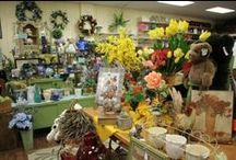Nature's Gift Flower Shop / Nature's Gift Flower Shop is now featured in Google Business View! Click through any of the images to see inside this local florist shop. Interested in tours and photos for your business? Call for a quote: 855-3-GOOGLD