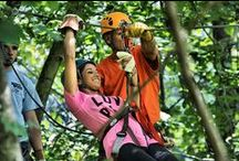 Black Mountain Thunder Zipline / Hear the wind crack as you zip across a treetop canopy on one of Kentucky's tallest mountains.
