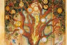 tree of life / by Lesley Deluz