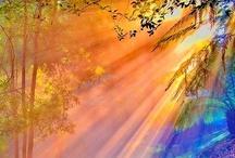 Nature, Our Amazing World / by marsha scott